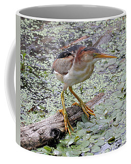 Coffee Mug featuring the photograph Least Bittern by Doris Potter