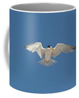 Least Tern 2 Coffee Mug