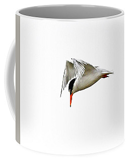 Least Tern  Coffee Mug