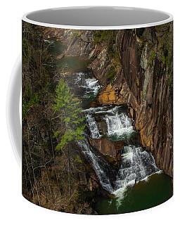L'eau D'or Falls Coffee Mug
