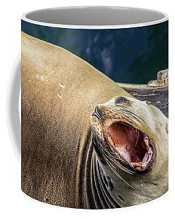 California Sea Lion Yawn Coffee Mug