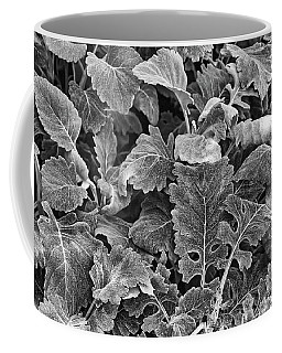Leaves, Black And White Coffee Mug