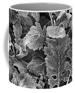 Coffee Mug featuring the photograph Leaves, Black And White by Richard Goldman
