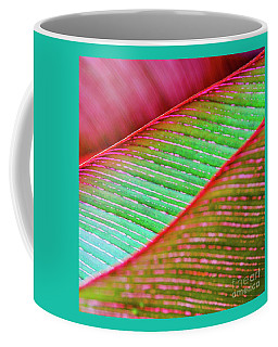 Coffee Mug featuring the photograph Leaves In Color  by D Davila