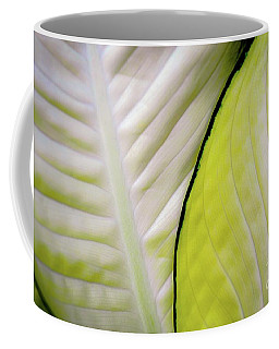 Leaves In White Coffee Mug