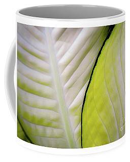 Coffee Mug featuring the photograph Leaves In White by D Davila