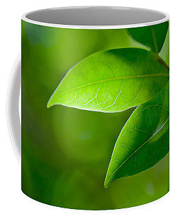 Leaves Of Green Coffee Mug