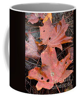 Leaves-old Leaves Coffee Mug