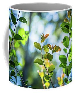 Leaves Reaching Out Coffee Mug