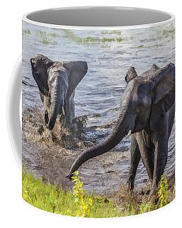 Leaving The River Coffee Mug