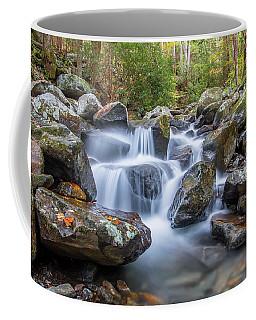 Leconte Creek Watrefall Coffee Mug