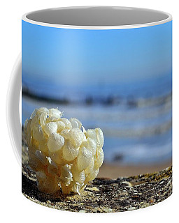 Left By The Tide Coffee Mug