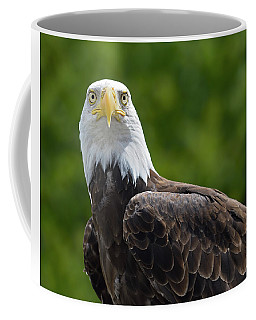 Coffee Mug featuring the photograph Left Turn by Tony Beck