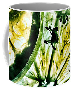 Coffee Mug featuring the photograph Lemon And Lime by Marianna Mills