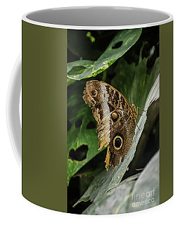 Coffee Mug featuring the photograph Lemon Pansy by Michelle Meenawong