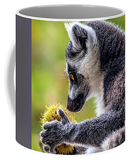 Lemur And Sweet Chestnut Coffee Mug