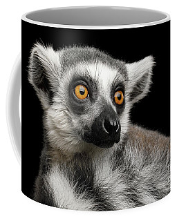 Coffee Mug featuring the photograph Lemur by Sergey Taran