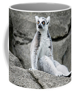 Lemur The Cutie Coffee Mug