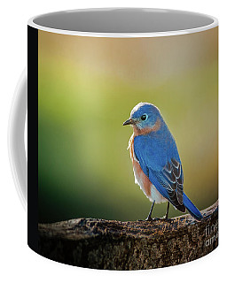 Lenore's Bluebird Coffee Mug