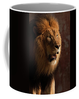 Coffee Mug featuring the photograph Leo by Howard Bagley