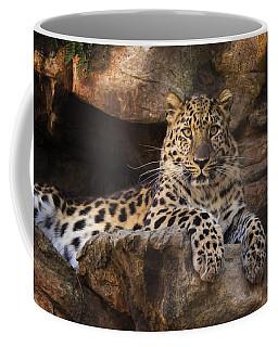 Leopard Photograph Coffee Mug