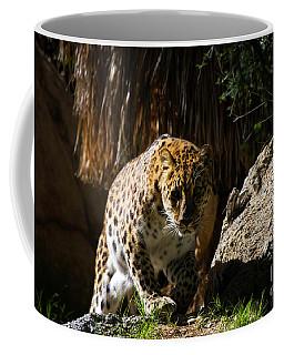 Leopard Stare Coffee Mug