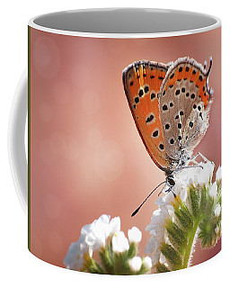 Lesser Fiery Copper Coffee Mug