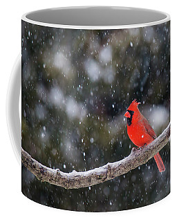 Coffee Mug featuring the photograph Let It Snow by Mircea Costina Photography