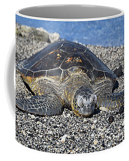 Coffee Mug featuring the photograph Let Me Rest by Pamela Walton
