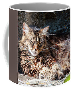 Let Me Sleep... Coffee Mug
