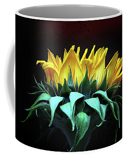 Let The Sunshine In Coffee Mug