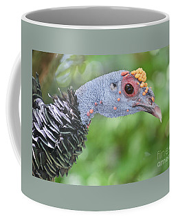 Coffee Mug featuring the photograph Let's Talk Turkey by Judy Kay