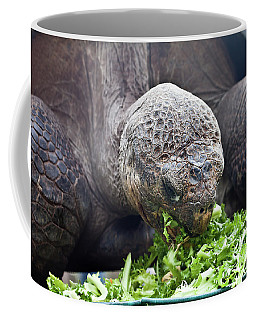 Coffee Mug featuring the photograph Lettuce Makes You Strong by Miroslava Jurcik