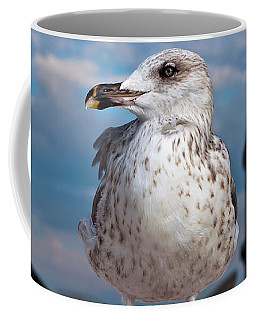 Liberty Of An Pacific Gull Coffee Mug