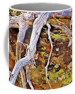 Lichen Art Coffee Mug