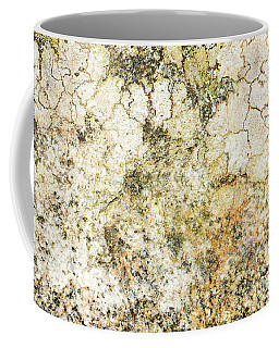 Coffee Mug featuring the photograph Lichen On A Stone, Background by Torbjorn Swenelius