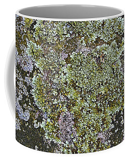 Lichen On New England Stone Coffee Mug by Mary Bedy