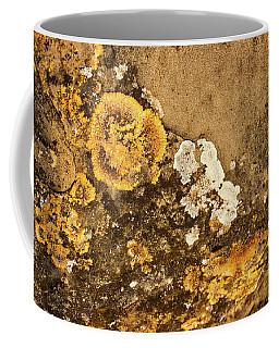Coffee Mug featuring the photograph Lichen On The Piran Walls by Stuart Litoff