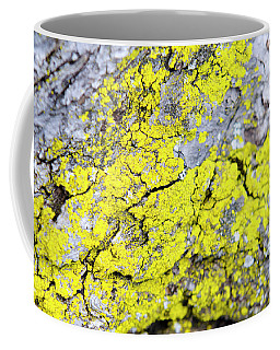 Coffee Mug featuring the photograph Lichen Pattern by Christina Rollo