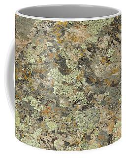 Lichens On Boulder Coffee Mug by Jayne Wilson