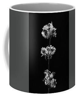 Life Circle Coffee Mug