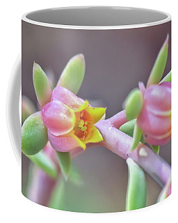 Coffee Mug featuring the photograph Life Delights In Life by Kerri Farley