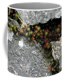 Life Lived In The Cracks Coffee Mug