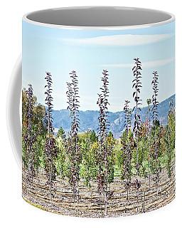 Life On A Tree Farm-foothills View #1 Coffee Mug