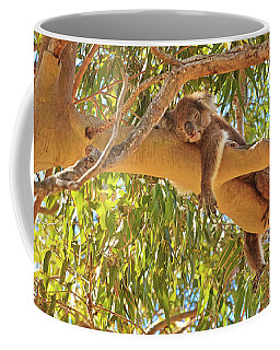 Life's Hard, Yanchep National Park Coffee Mug by Dave Catley