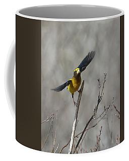 Liftoff-male Evening Grosbeak Coffee Mug