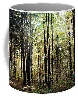Coffee Mug featuring the photograph Light Among The Trees by Felipe Adan Lerma
