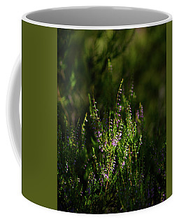 Light And Shadows On Common Heathers Coffee Mug