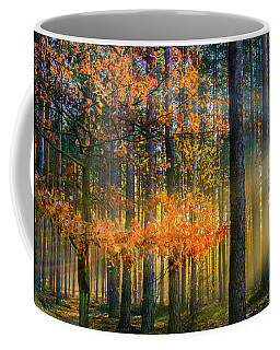 Coffee Mug featuring the photograph Light Catcher by Dmytro Korol