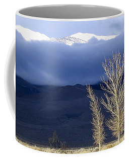 Light Hawk Coffee Mug